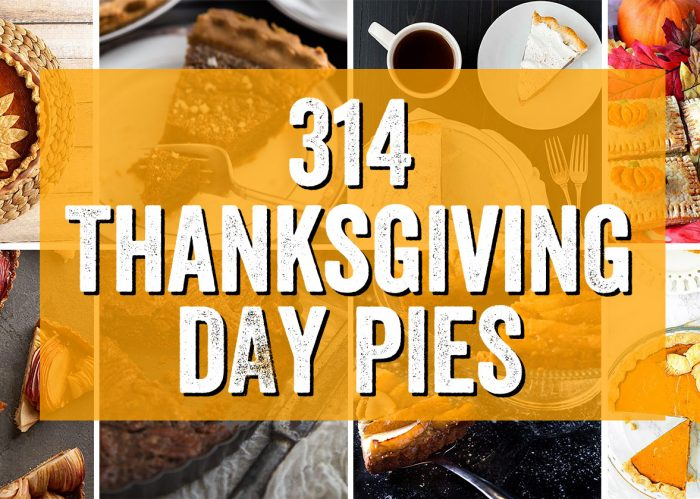 314 Thanksgiving Day Pies